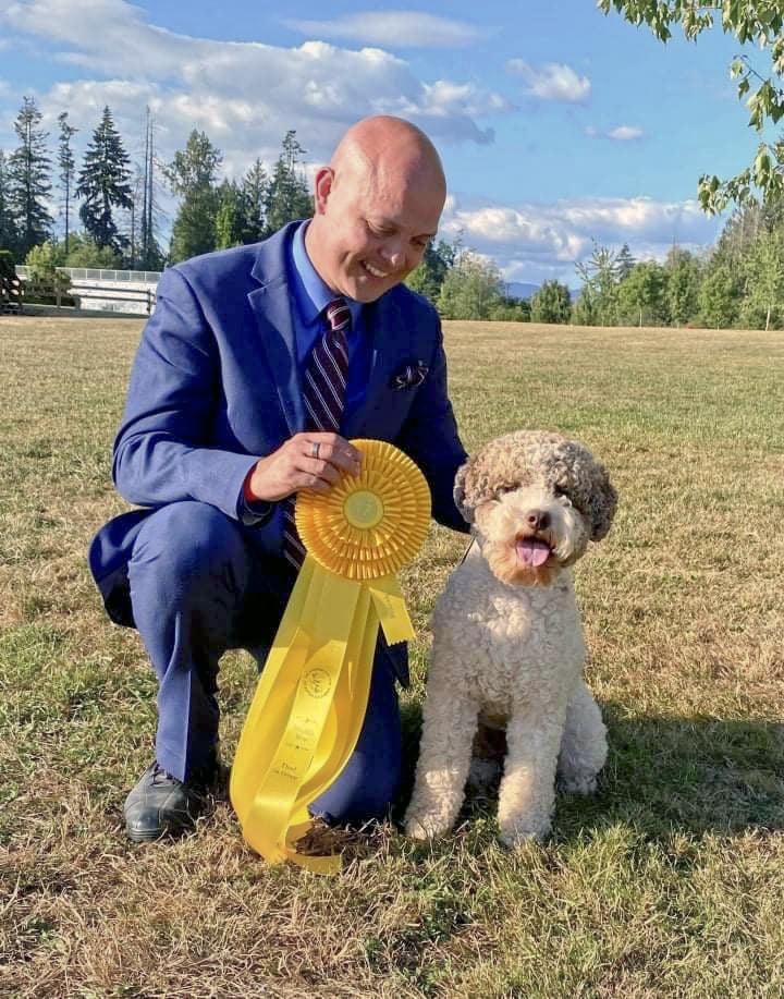 Basil Lagotto Romagnolo Dog