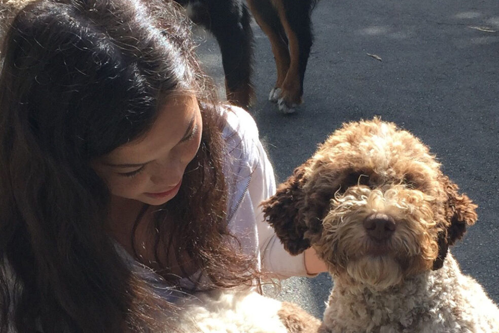 Sunshine on Lagotto Dog and Human